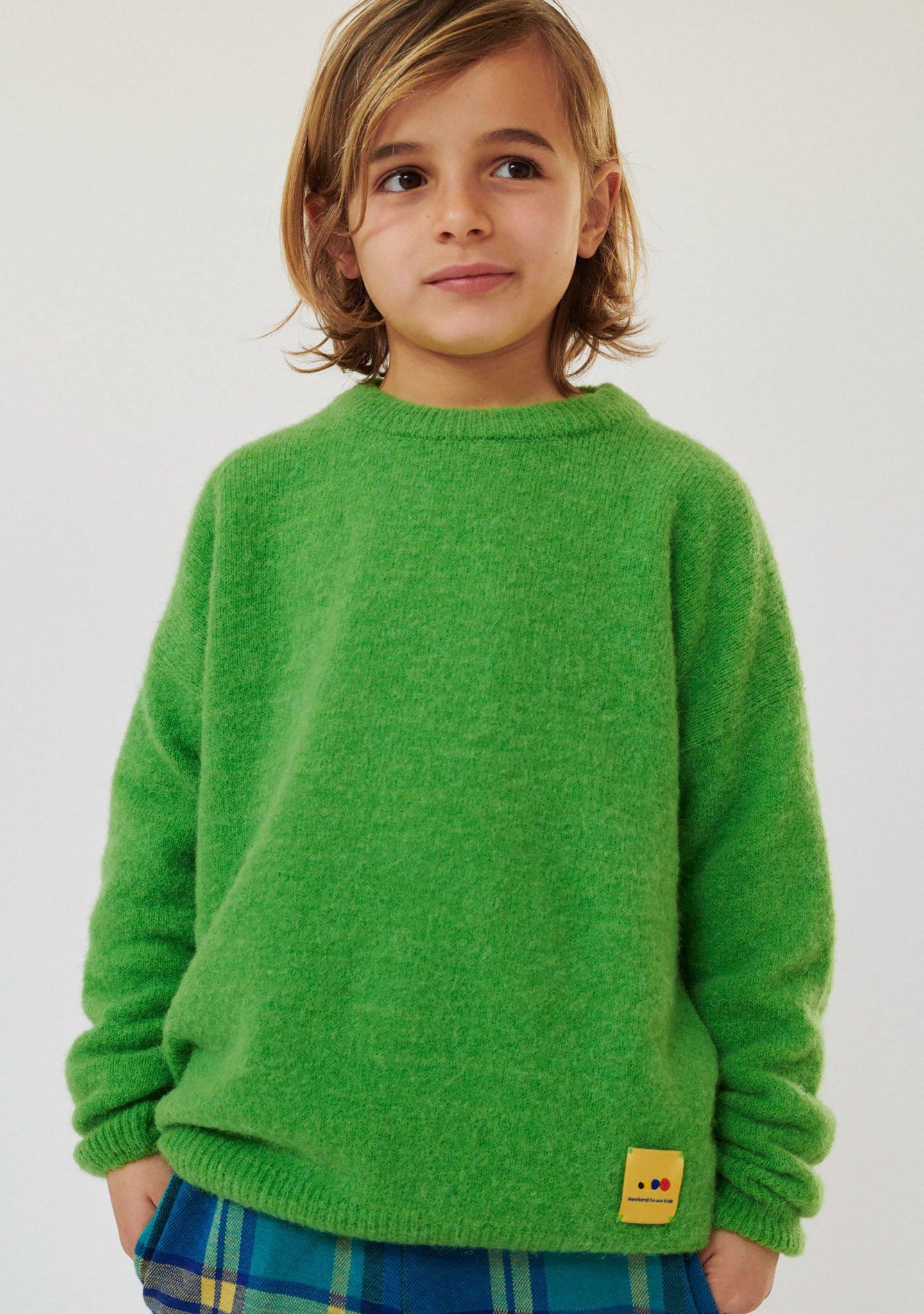 Alpaca Sweater for Kids